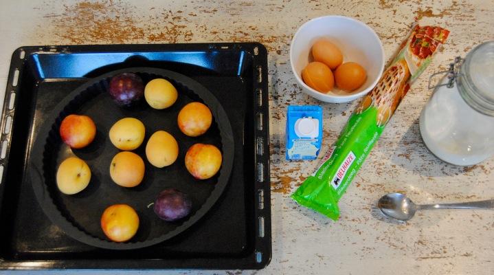 Tarte prunes et abricots_0056