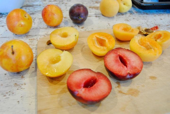 Tarte prunes et abricots_0073