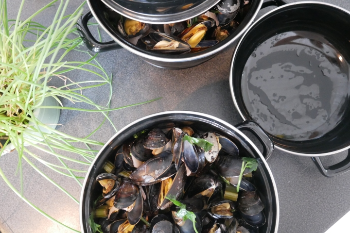 moules_coco_coriandre@happyfridge1040164.jmoules_coco_coriandre@happyfridgeg.jpg